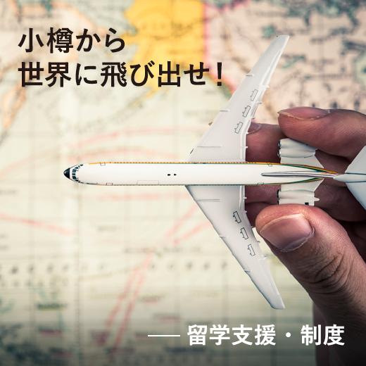 5万円からはじまる海外留学。留学支援・制度